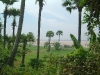 fields-gouthami-rvr