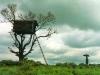 kerala-tree-house